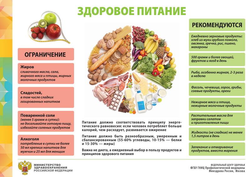 Здоровое питание информация y